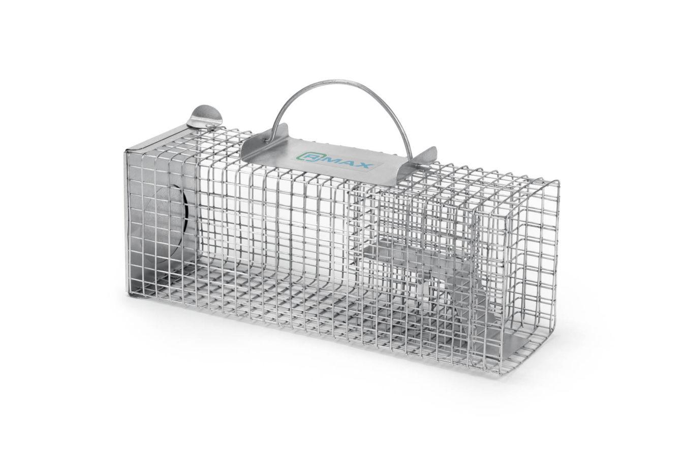 Multi S3 na myszy i szczury