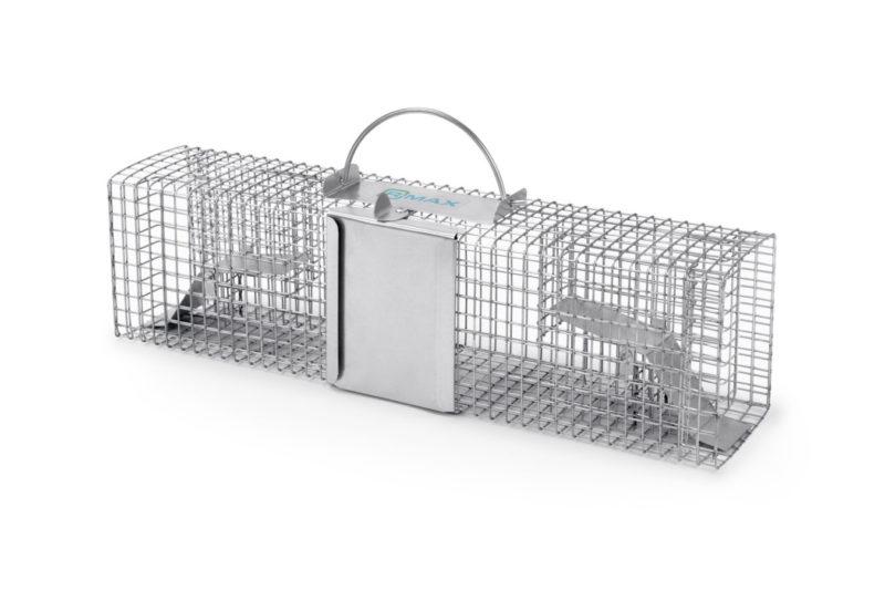 Multi S4 na myszy i szczury